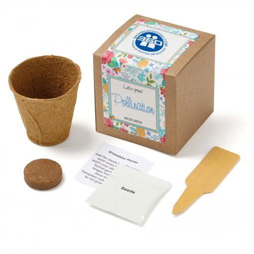 Wildflowers Planter in Kraft Gift Box