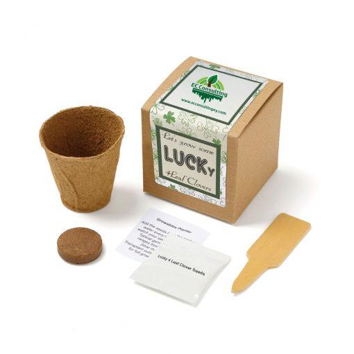 Lucky 4 Leaf Clover Growables Planter in Kraft Gift Box