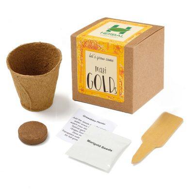 Marigold Growables Planter in Kraft Gift Box w/Seeds