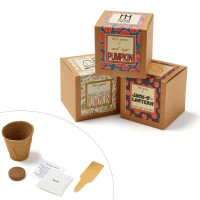 Small Sugar Pumpkin Growables Planter Pot in Kraft Gift Box w/Seeds