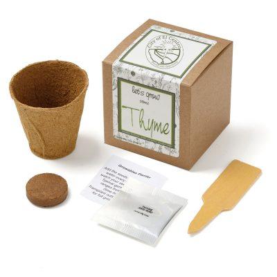 Thyme Planter in Kraft Box