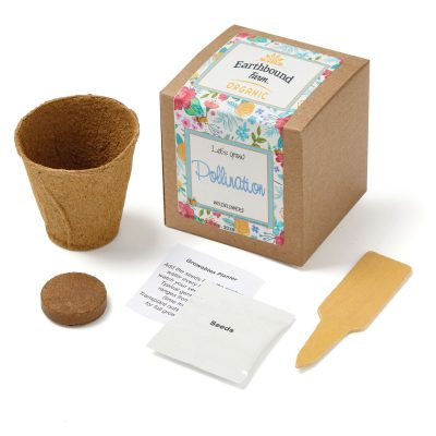 Wildflowers Planter in Kraft Gift Box w/Seeds